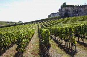 Mmmm... Saint Emilion! One of the most seductive locations in France if you want to experience buying direct from the wine-grower