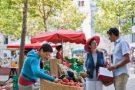 Market Guide: Pyrénées-Orientales – Perpignan