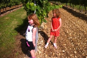 Children of the vines: Caroline and Ludovic's twin daughters