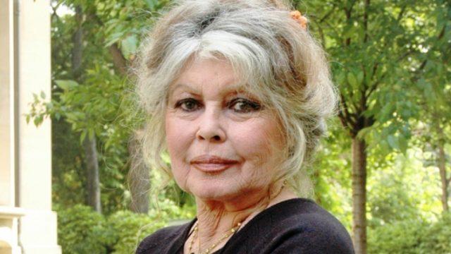 Brigitte-Bardot-J-aime-trop-mon-pays-pour-le-fuir_article_landscape_pm_v8.jpg