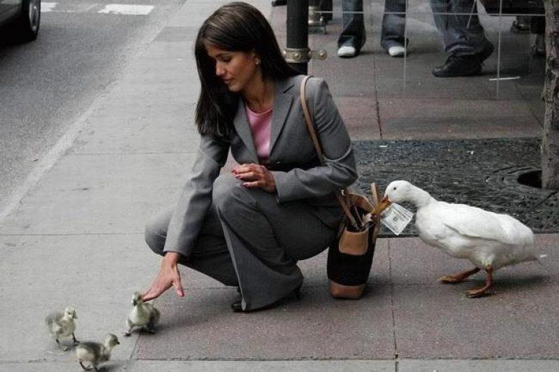 pickpocket1.jpg